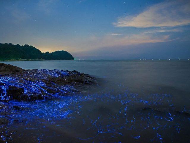 Морские светлячки на скале и водоеме с пейзажным видом на горы под голубым небом природа
