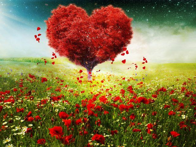 День Святого Валентина любовь сердца дерево пейзаж