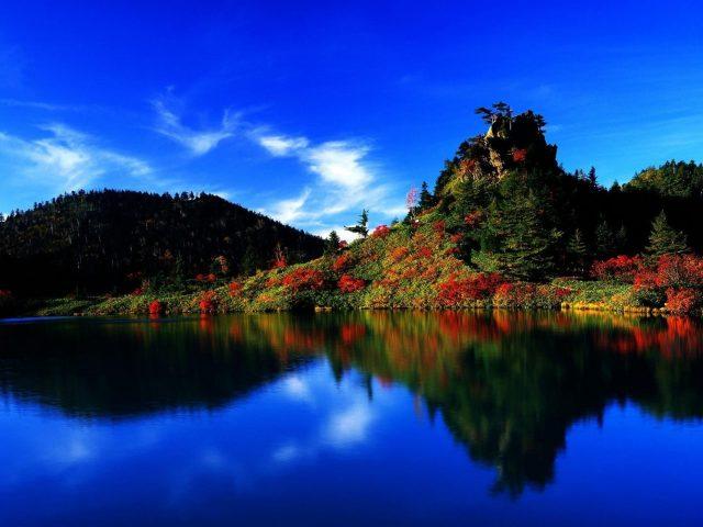 Красочные зеленые деревья и красные цветы покрыли гору рядом со спокойным водоемом с отражением под голубым небом природы