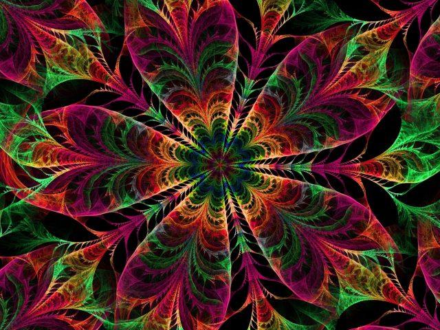 Калейдоскоп узоров цветов