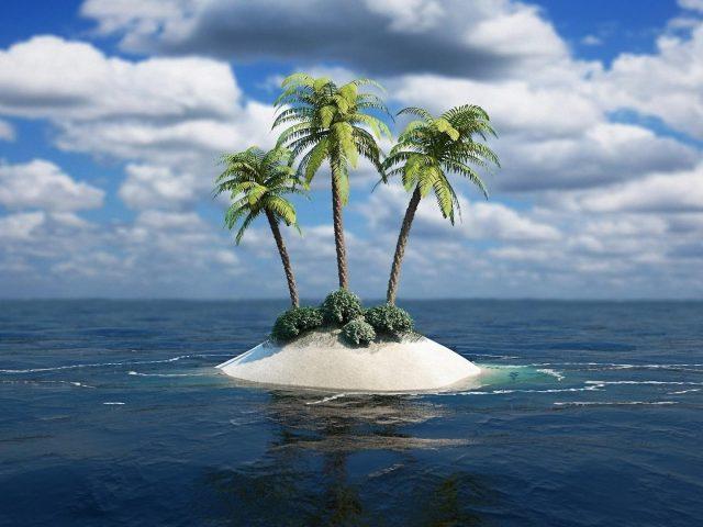 Пальмы посреди водоема под бело голубым облачным небом природа