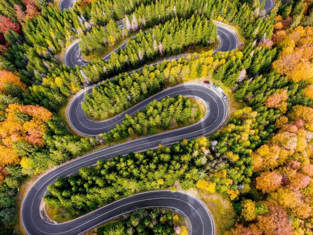 Воздушная изогнутая дорога, окруженная зелеными деревьями (2)