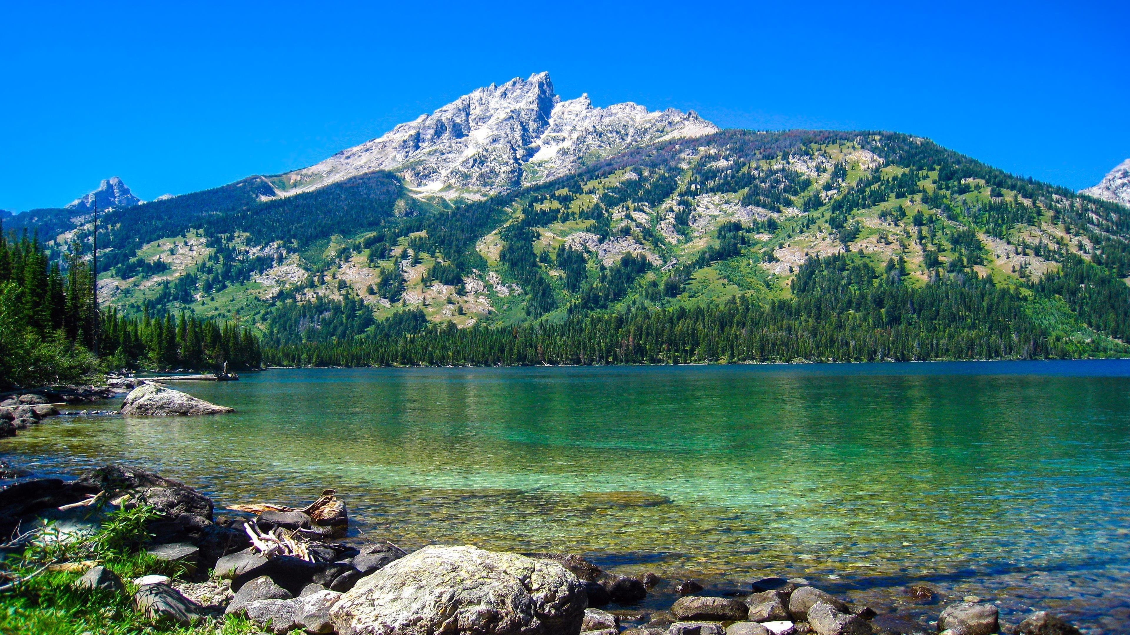 Дженни Лейк Гранд Титон национальный парк обои скачать