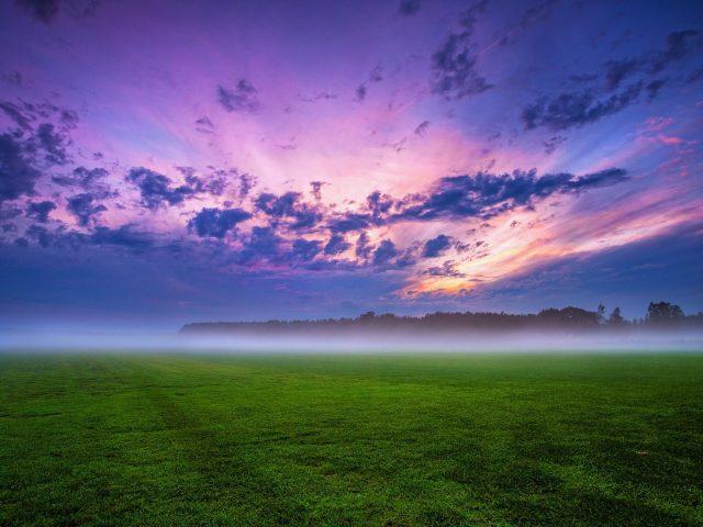 Облако поле туман трава пейзаж природа