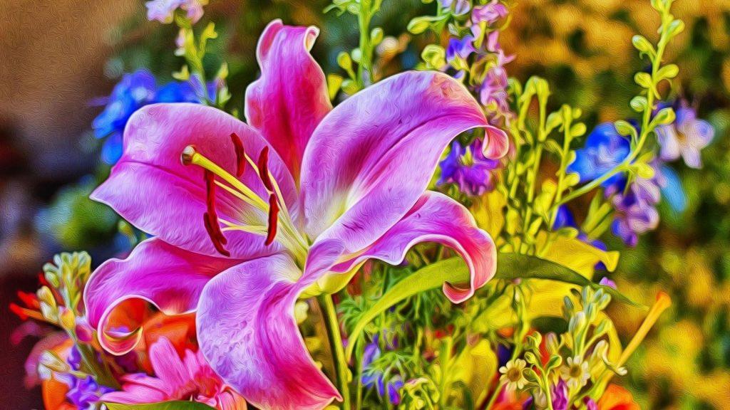 Цветок лилия роза цветы обои скачать