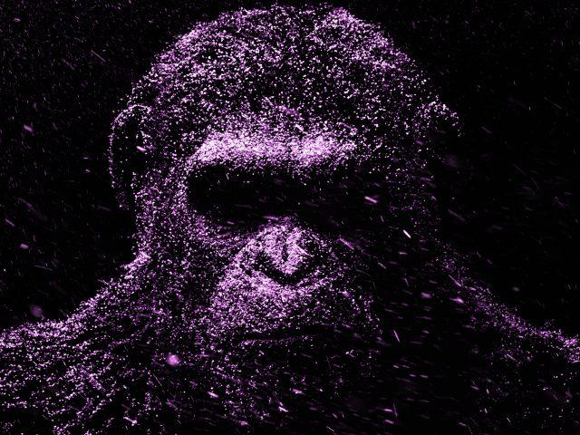 Фиолетовый Цезарь