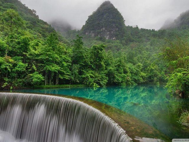 Зеленые деревья возле озера с отражением и водопадом в туманном лесу в дневное время природа