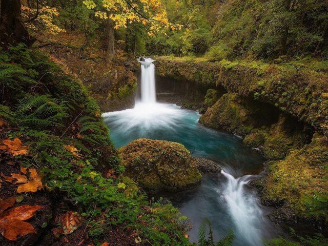 Водопады и ручьи в лесной природе