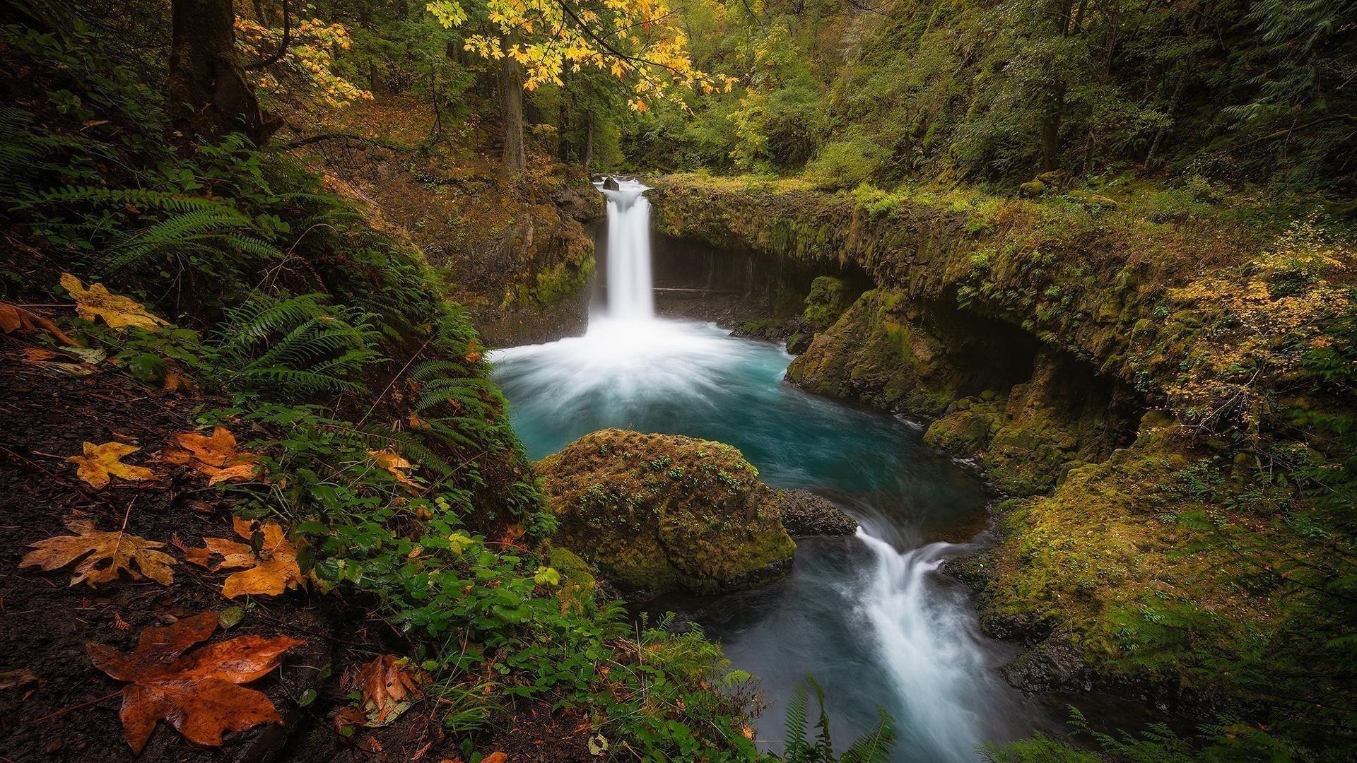 Водопады и ручьи в лесной природе обои скачать