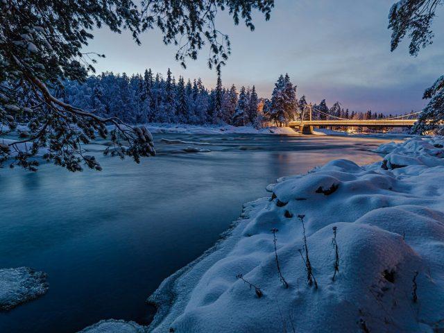 Заснеженные деревья с мостом под озером природа