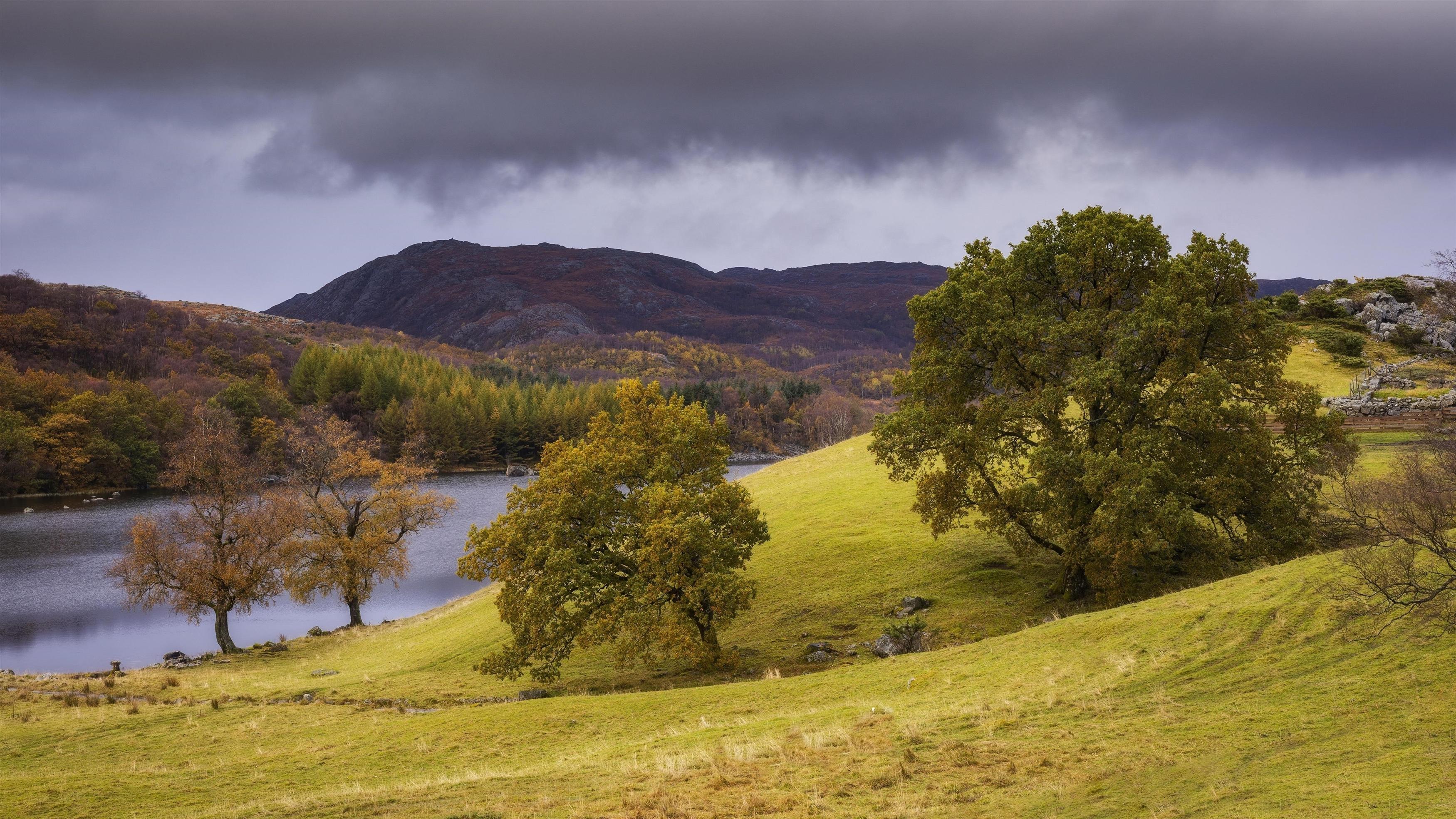 Темные облака под горами озеро зеленые деревья с зеленым полем природа обои скачать