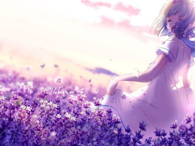 Аниме девушка лаванда фиолетовые цветы
