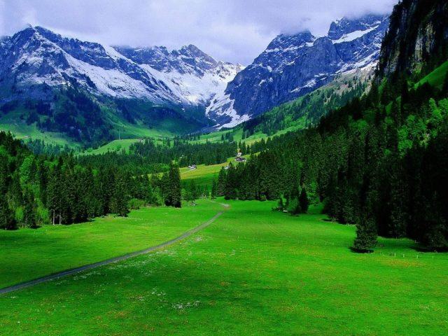 Зелень швейцарские Альпы горы с туманной природой