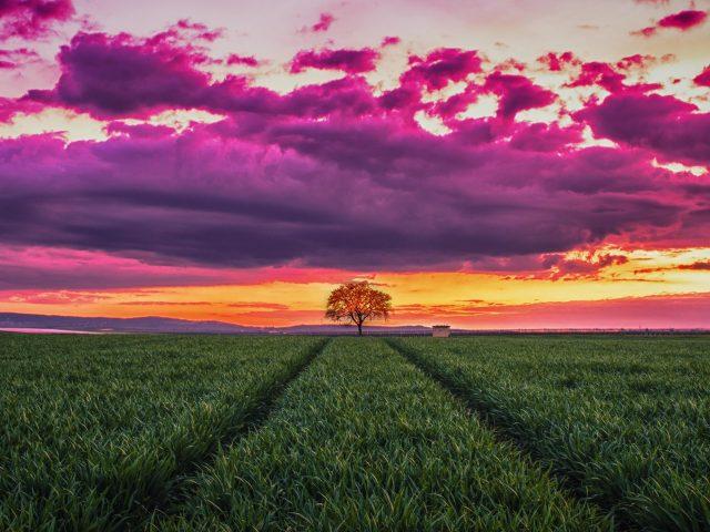 Закат пейзаж горизонт