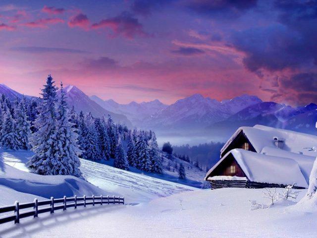 Заснеженные деревья в снежном поле и пейзажный вид гор под пасмурным небом зима