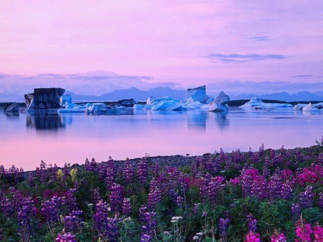 Пейзаж гор и камыша перед рекой с айсбергом во время восхода солнца природа