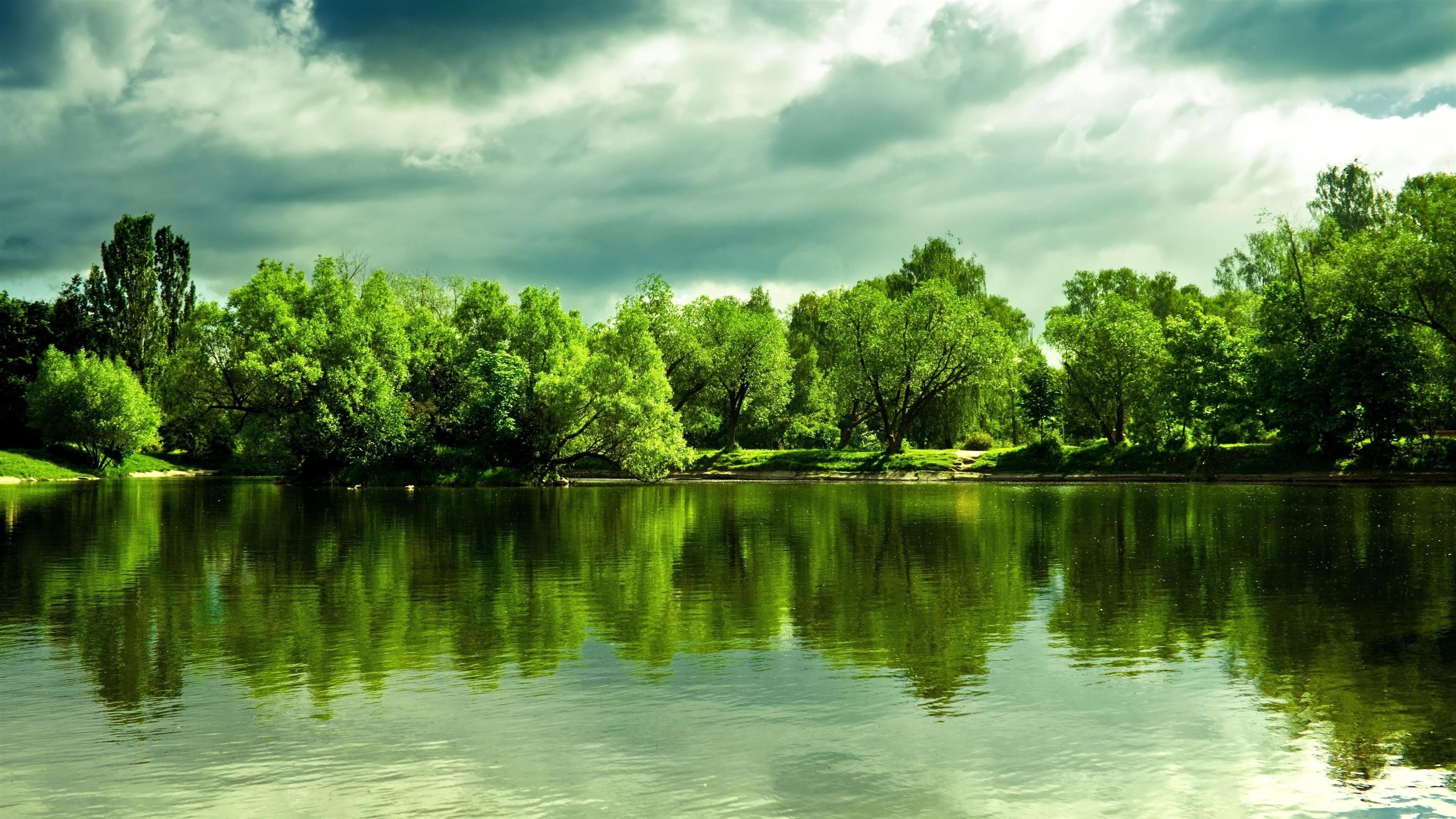 Зеленые деревья перед озером с пасмурной в дневное время природой обои скачать
