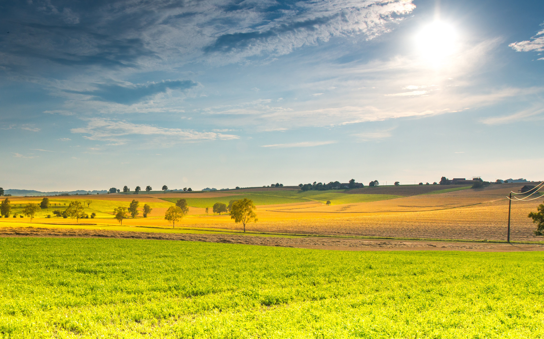 Весенний солнечный пейзаж. обои скачать