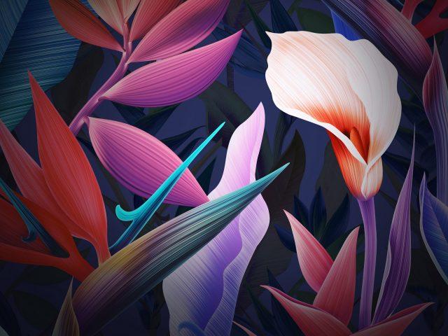 Неоновые цветы Huawei Mate 10 акции