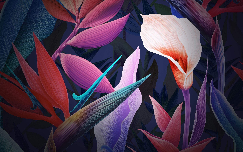 Неоновые цветы Huawei Mate 10 акции обои скачать