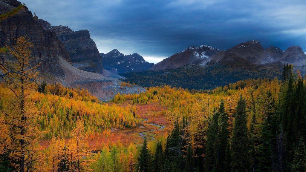 Пейзаж гор небо деревья вид природа обои скачать