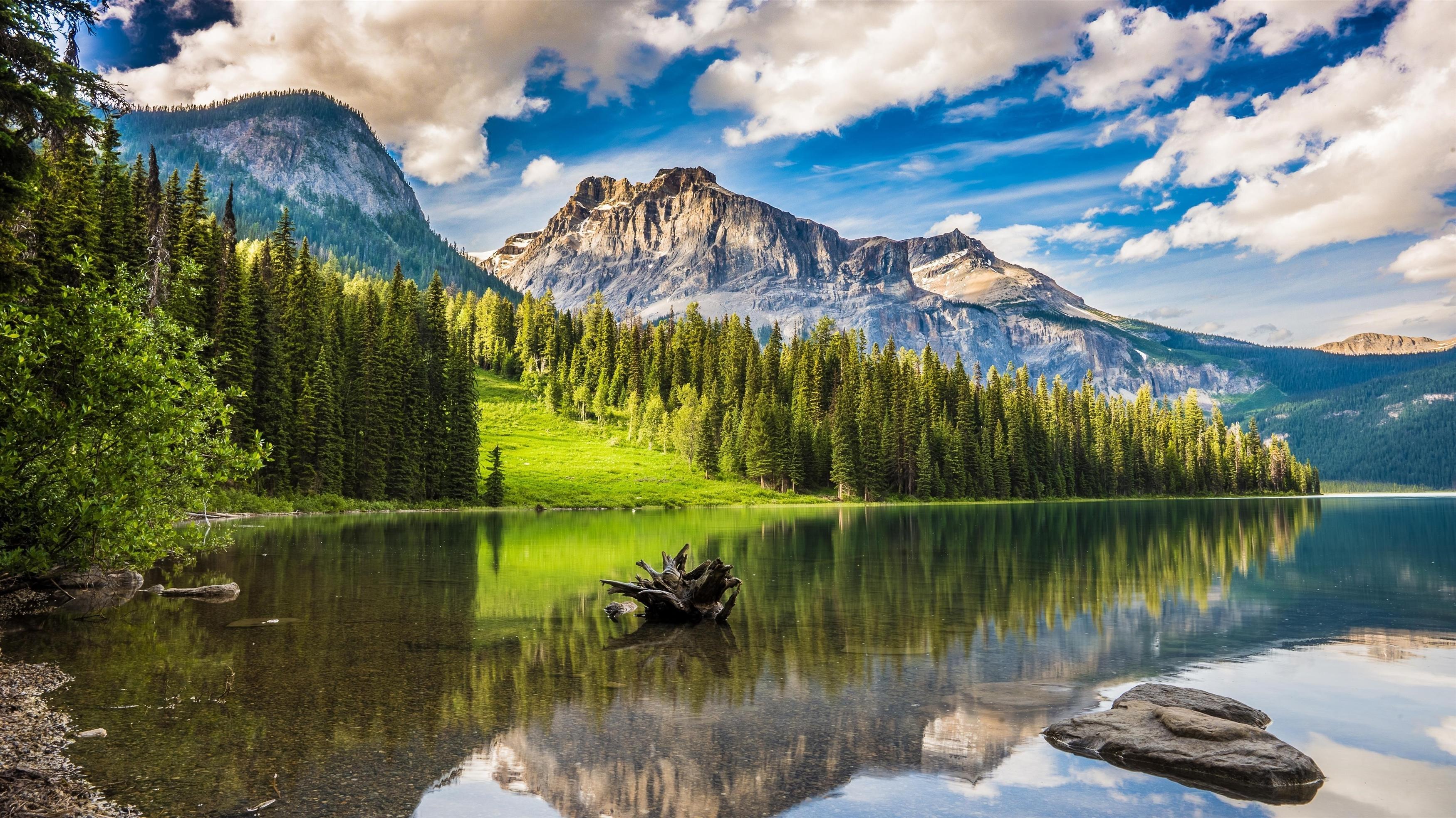 Изумрудное озеро в национальном парке Банф обои скачать