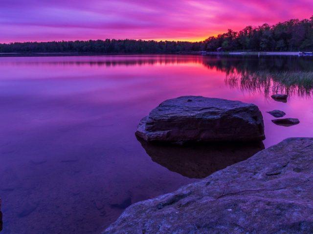 Красивый фиолетовый пейзаж вид с отражением деревьев на водной природе