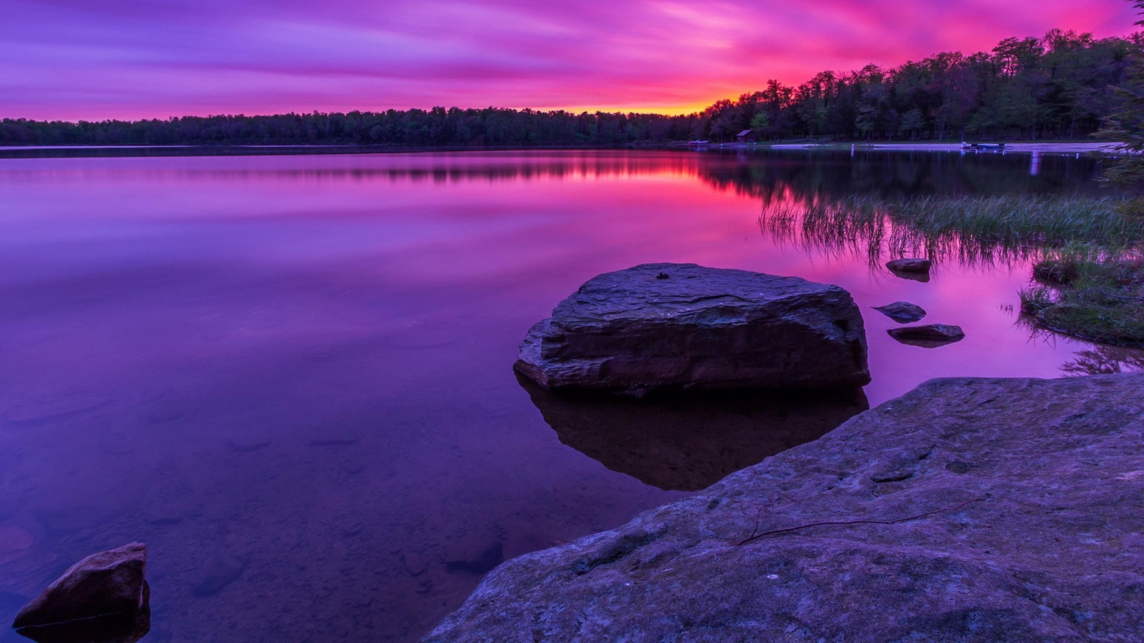 Красивый фиолетовый пейзаж вид с отражением деревьев на водной природе обои скачать