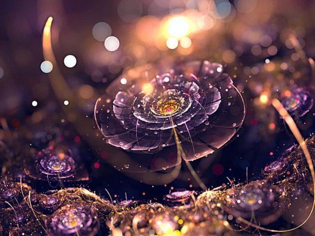 Светло-фиолетовый цветок фрактальный блик боке огни абстракция абстракция