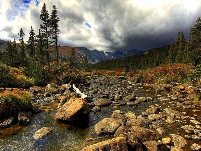 Камни галька камни на воде между зелеными деревьями лес горы фон под белыми облаками небо природа