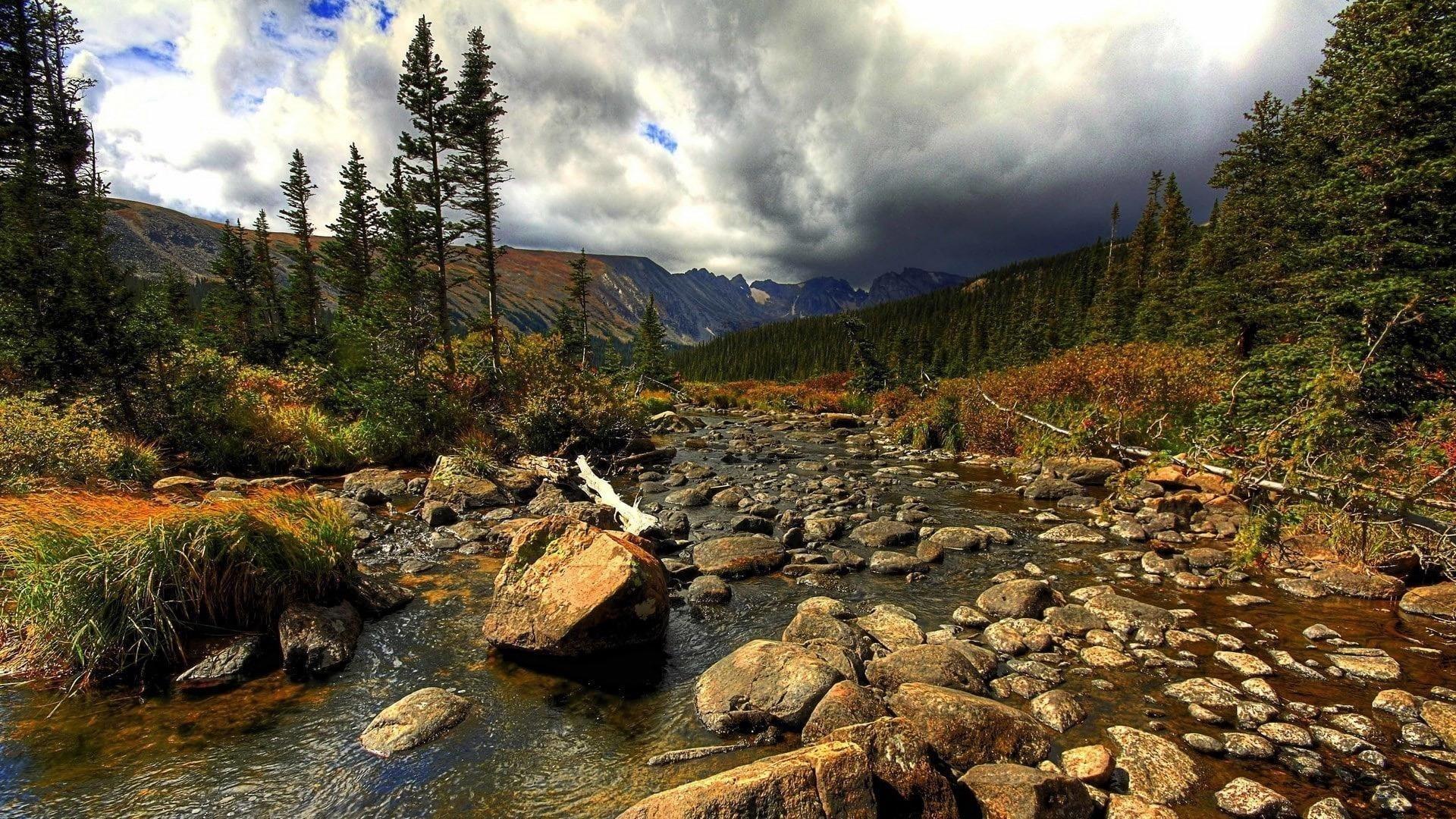 Камни галька камни на воде между зелеными деревьями лес горы фон под белыми облаками небо природа обои скачать