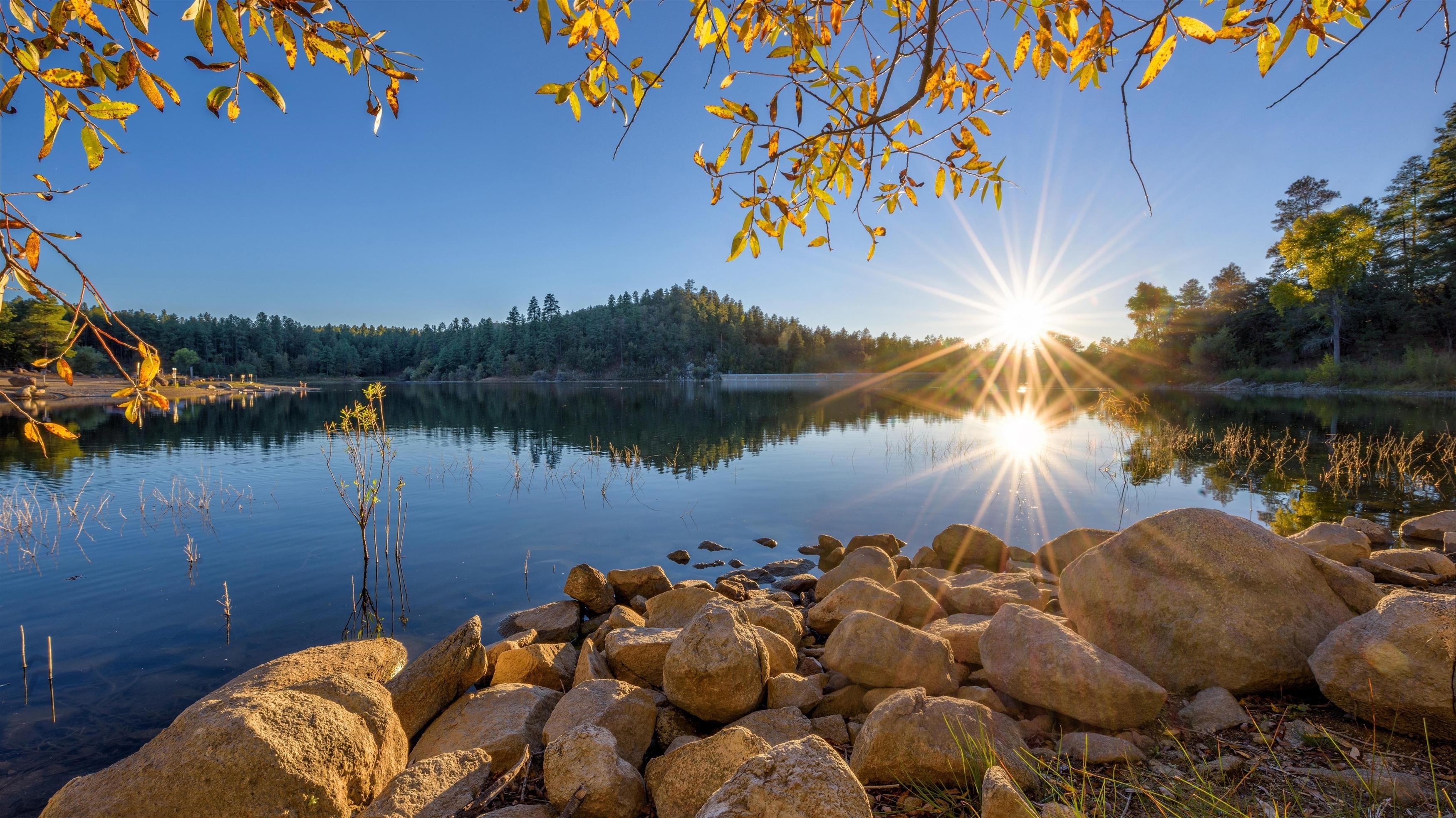 Озеро земля деревья обои скачать