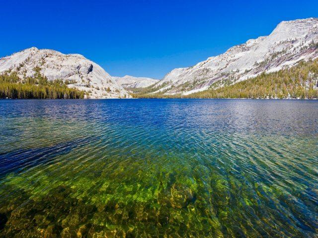 Национальный парк Йосемити на озере теная