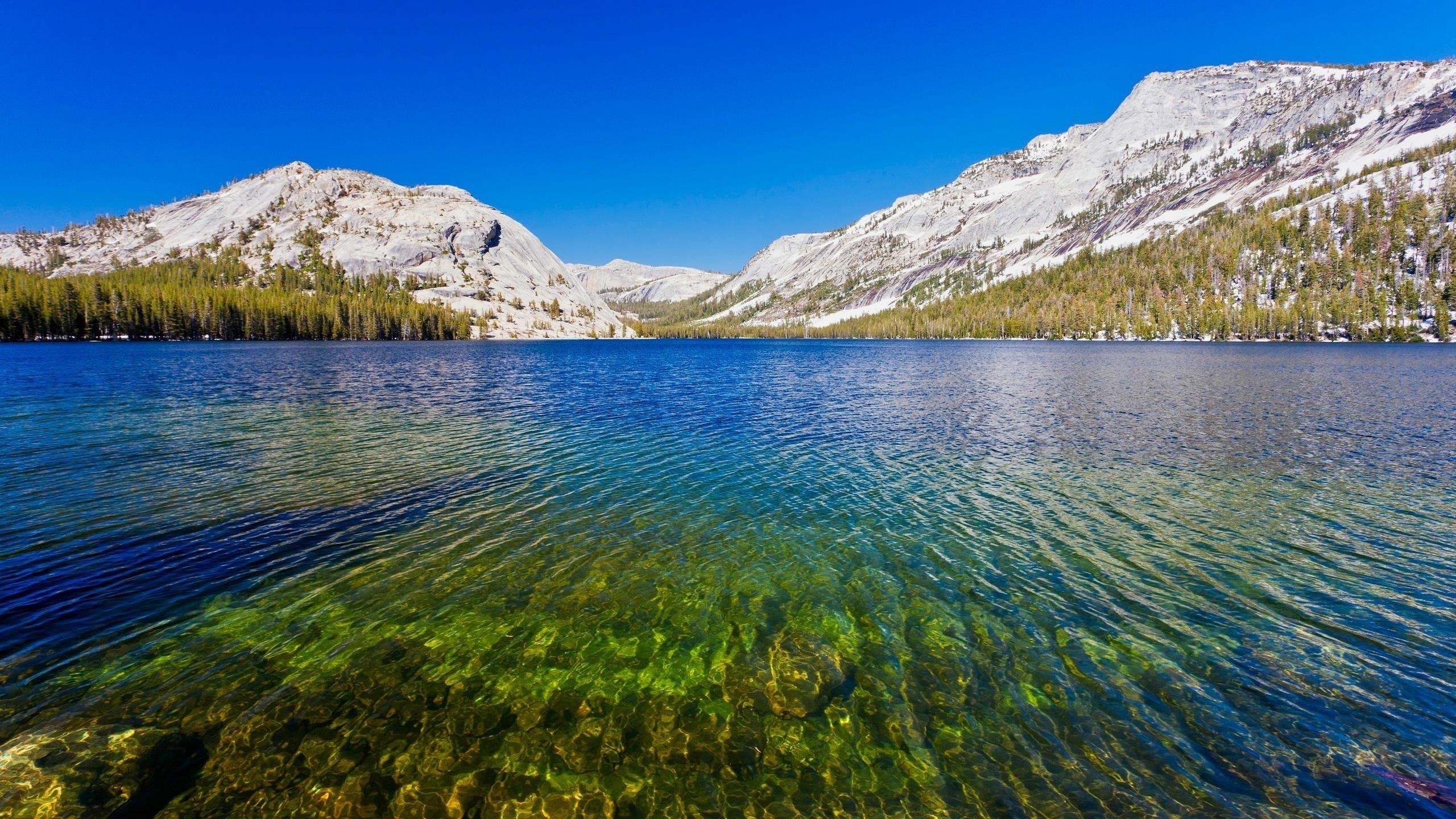 Национальный парк Йосемити на озере теная обои скачать
