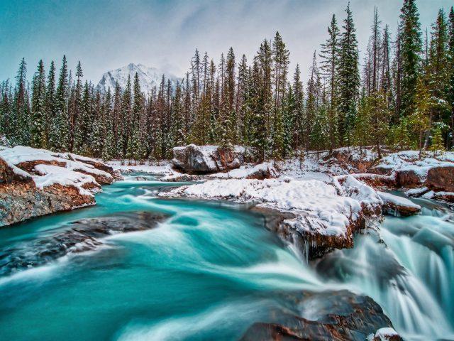 Национальный парк Йохо Британская Колумбия Канада река во время зимней природы