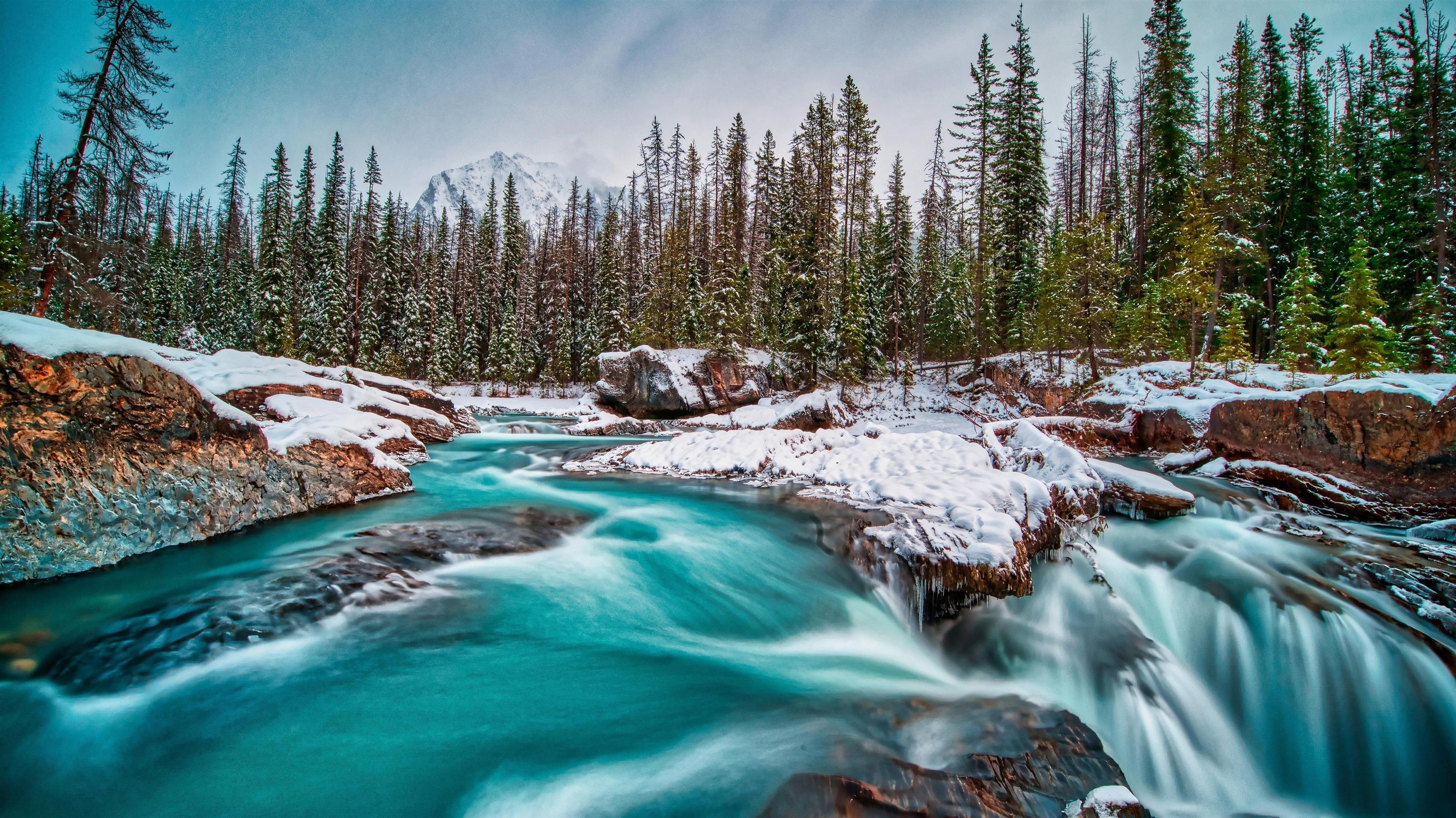Национальный парк Йохо Британская Колумбия Канада река во время зимней природы обои скачать