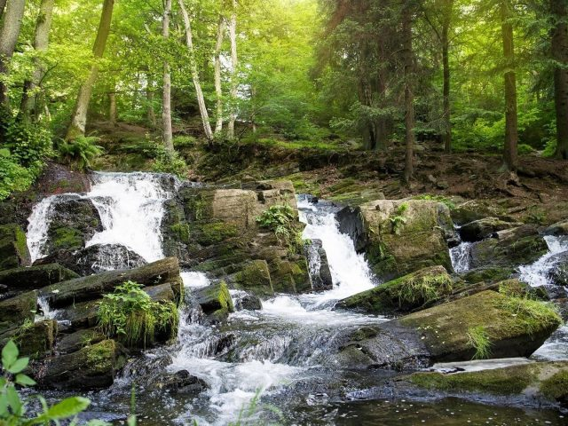 Водопад лесной водопад
