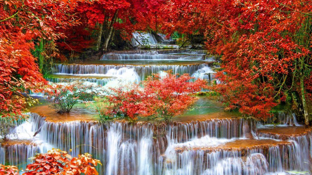 Водопадный ручей между красными осенними листьями деревьев в джунглях природы обои скачать