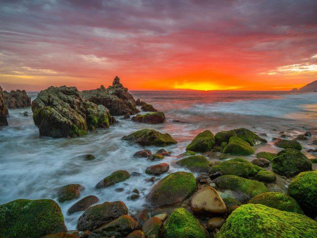 Зеленые водоросли покрыли скалы и пейзаж вид на восход солнца под желто-черным облачным небом природа
