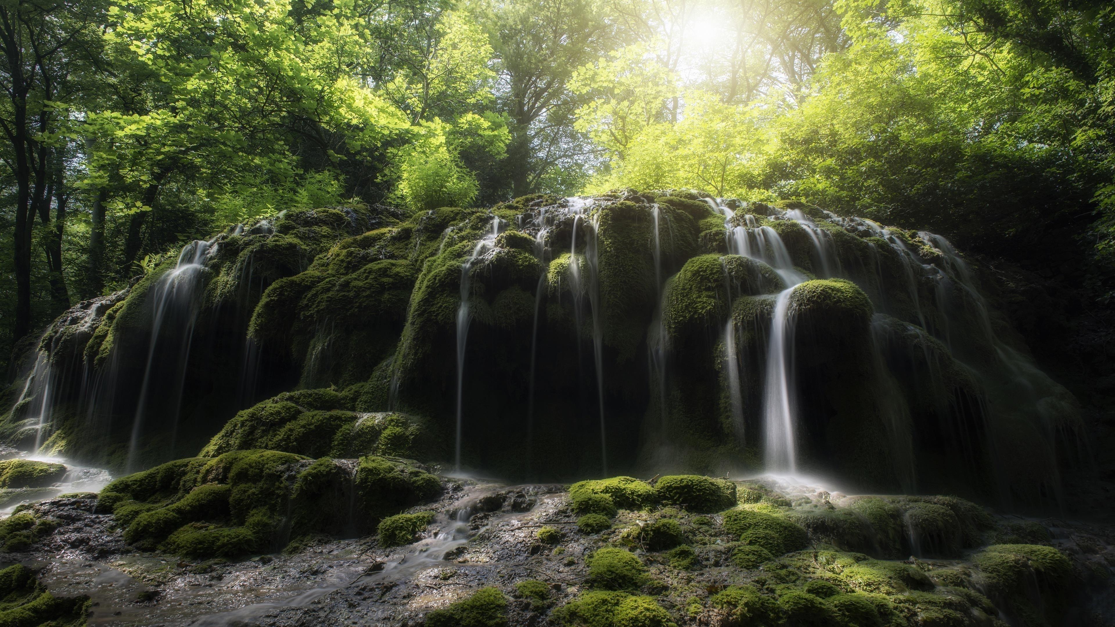Солнечный свет, проходящий сквозь зеленые листья под зелеными покрытыми скалами водопадом обои скачать