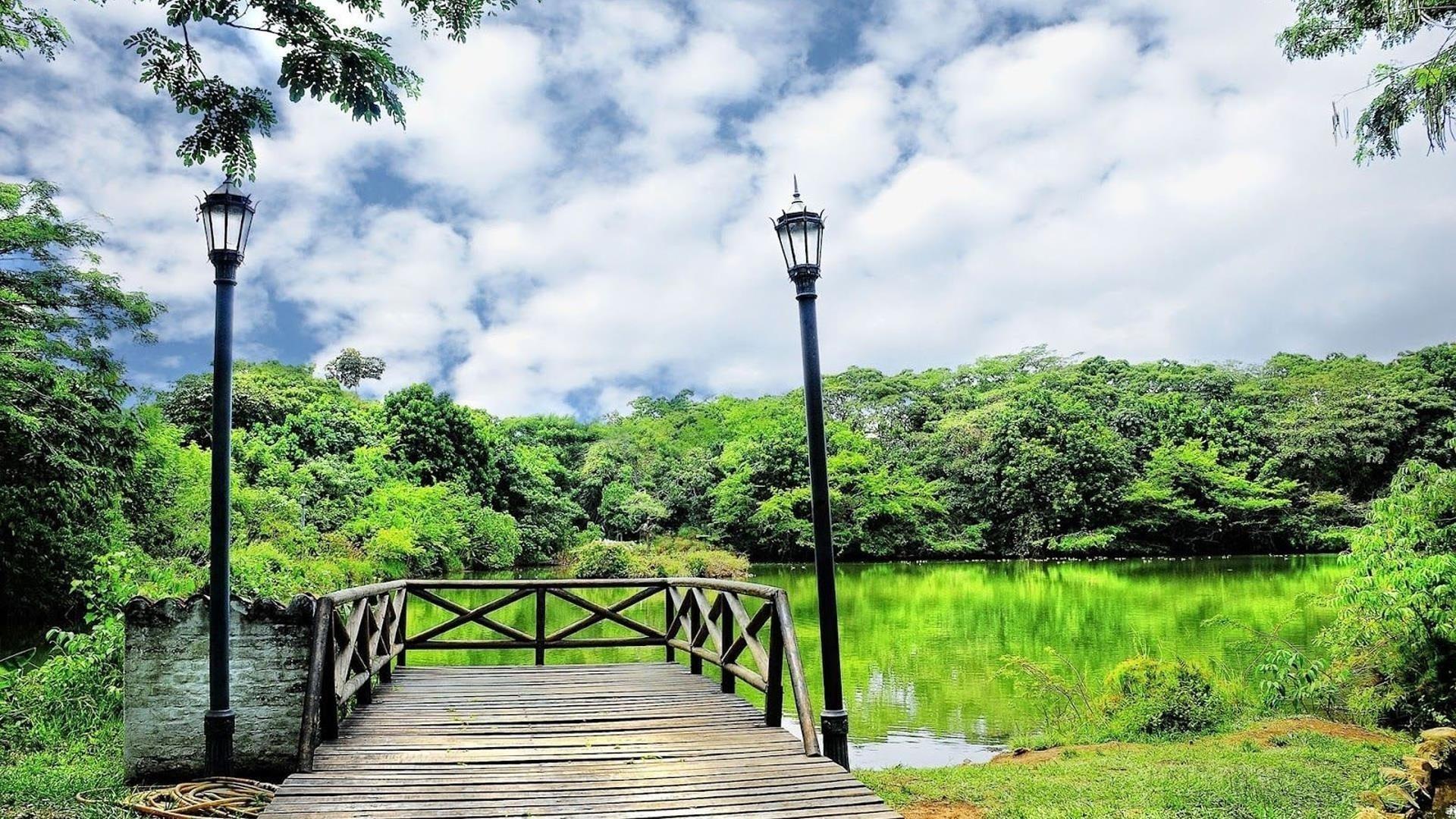 Деревянный причал перед водой зеленые деревья отражение на озере под белыми облаками пейзаж неба обои скачать