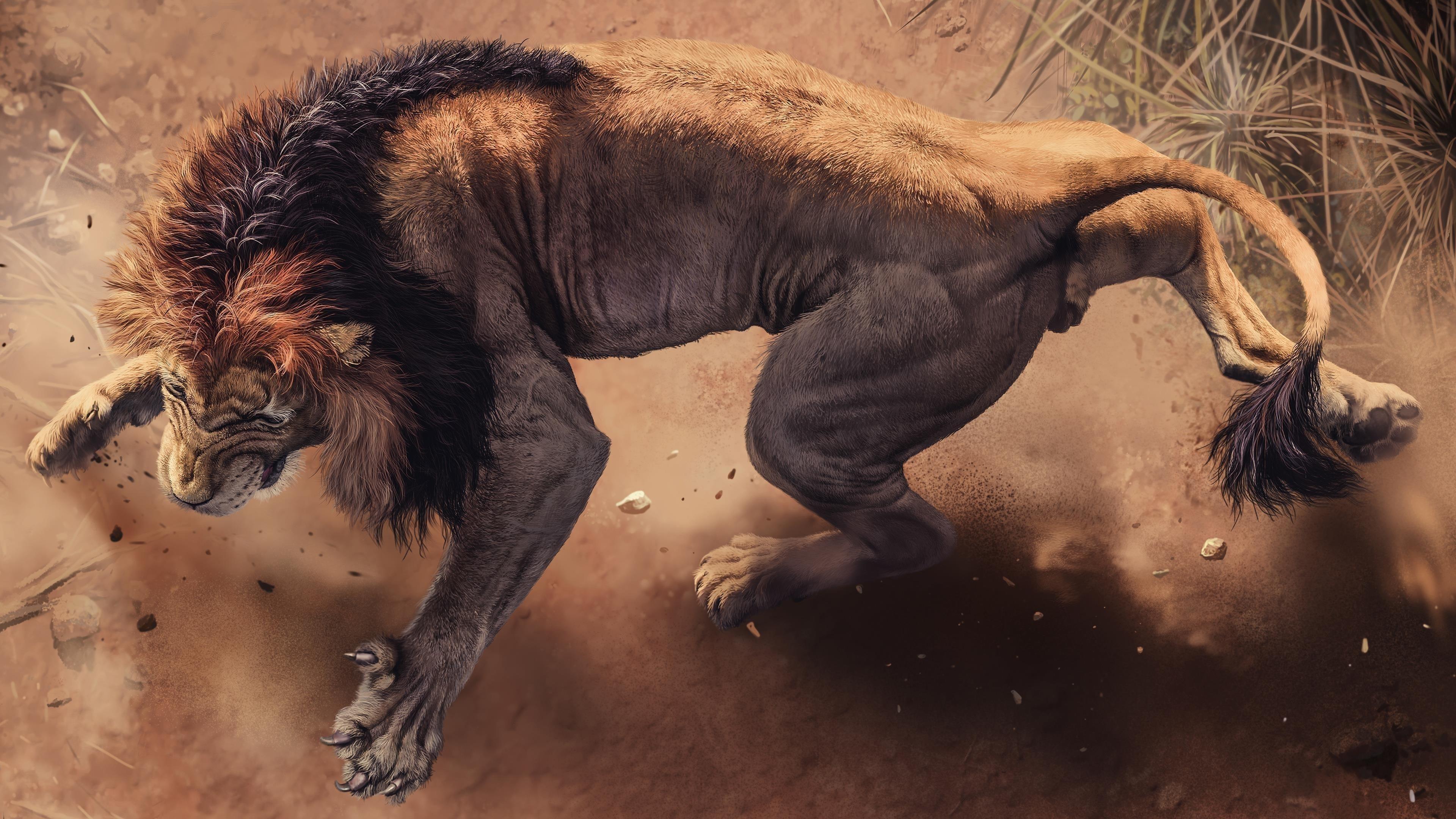 Дикий африканский лев обои скачать