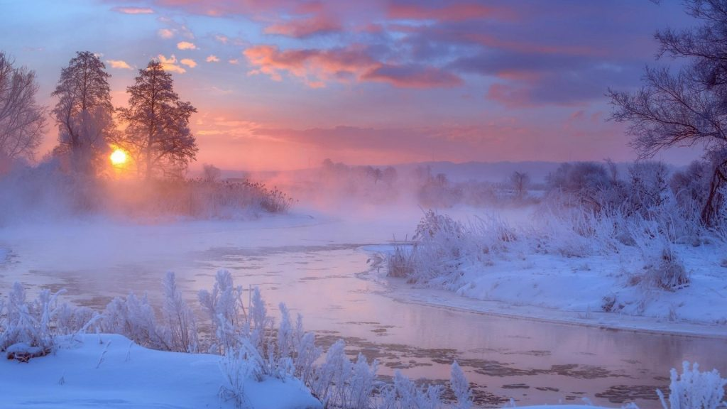 Река между замерзшими растениями и деревьями во время восхода солнца природа обои скачать
