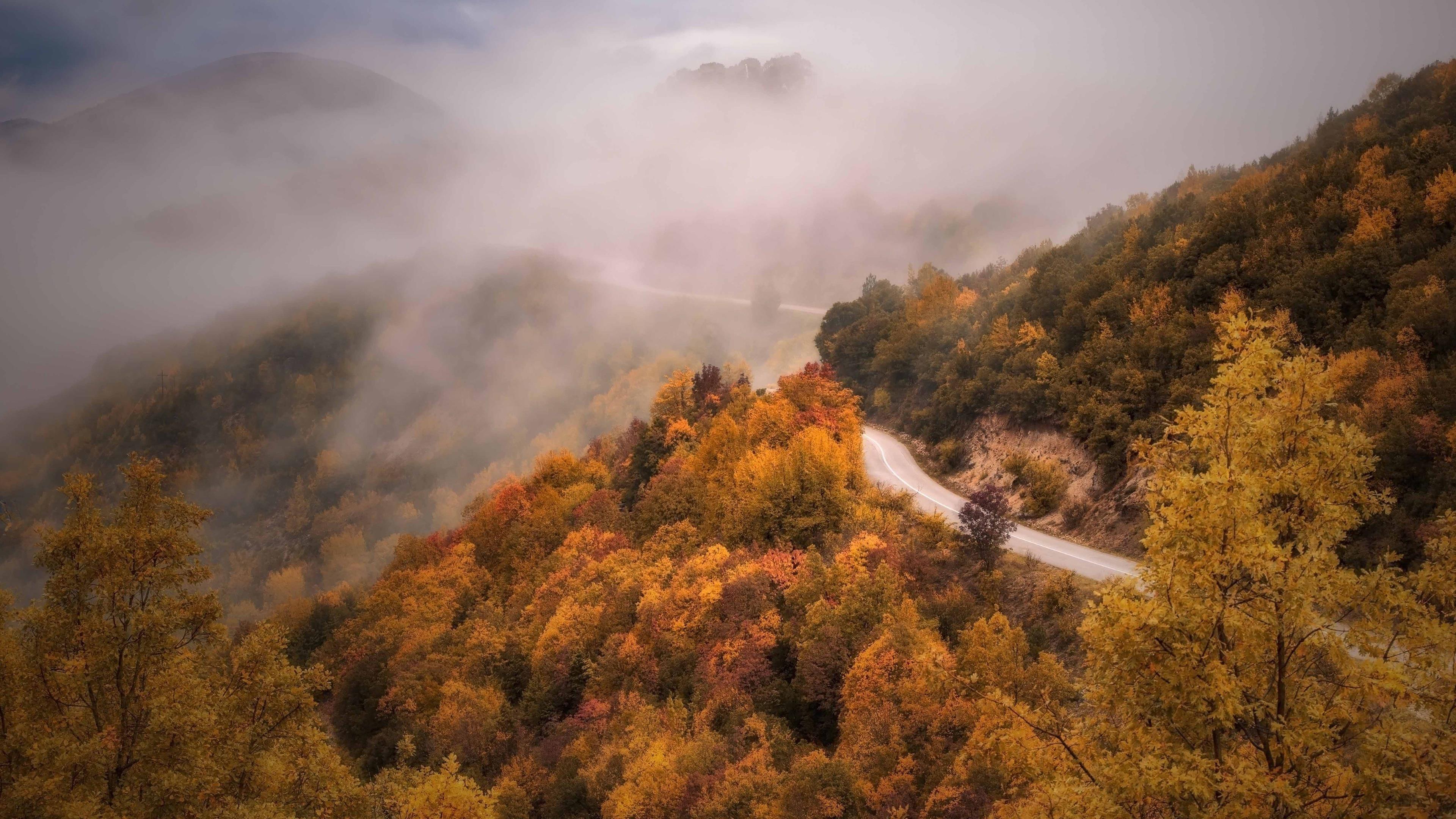 Дорога между осенним туманным лесом и горной природой обои скачать