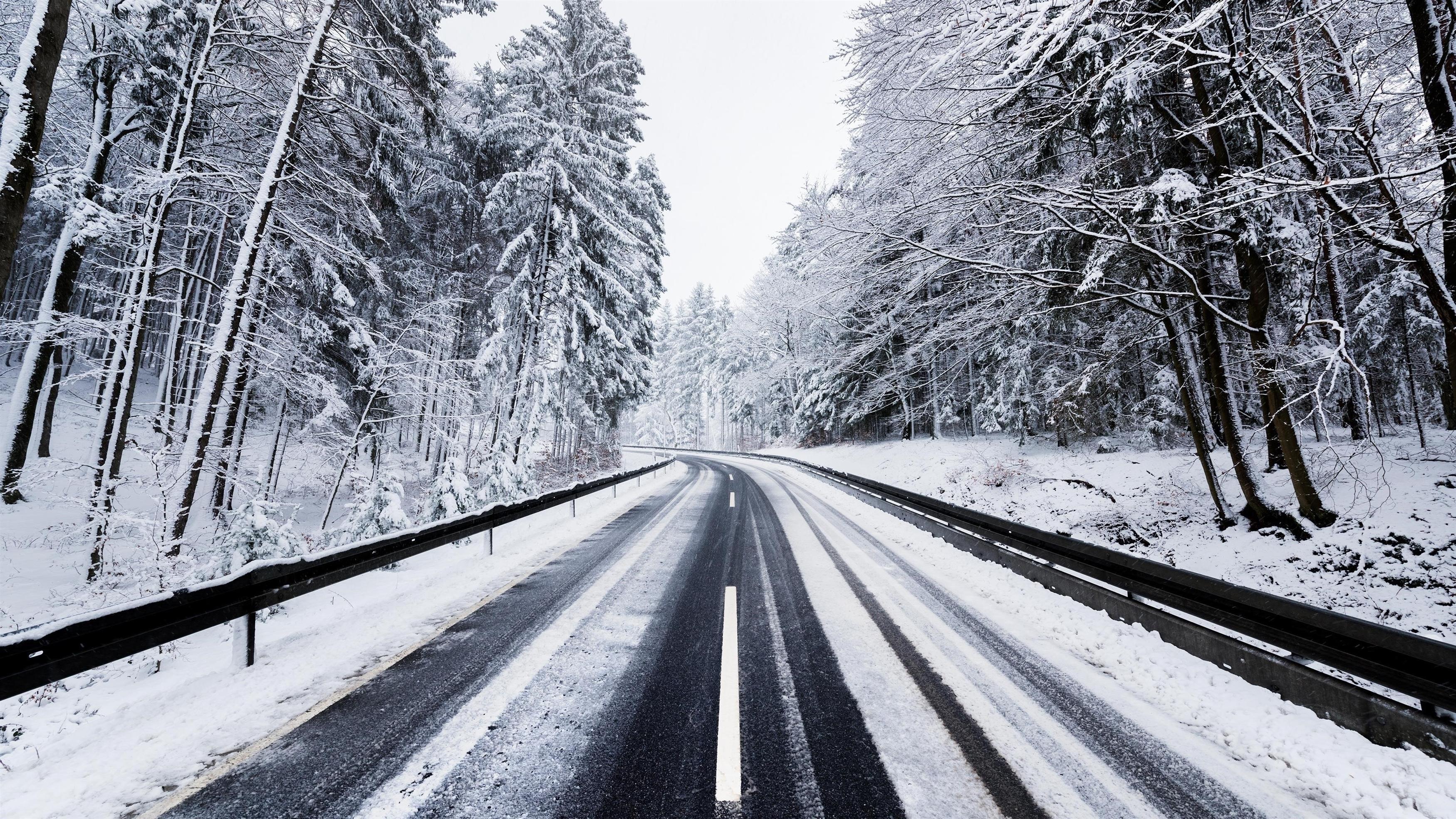 Зимняя лесная дорога обои скачать
