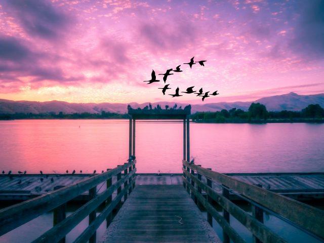 Живописное озеро закат