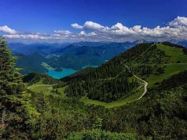 Пейзаж реки и покрытого зелеными деревьями леса на горе под голубым небом