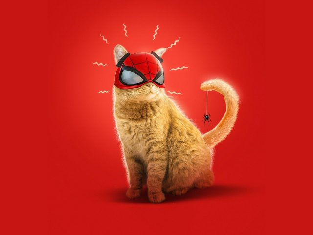 Кот паук Майлз Моралес искусство игры Человек-паук