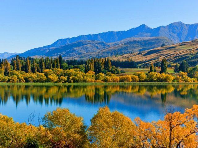 Пейзаж покрытых зеленью гор и зеленых деревьев лес с отражением водной природы
