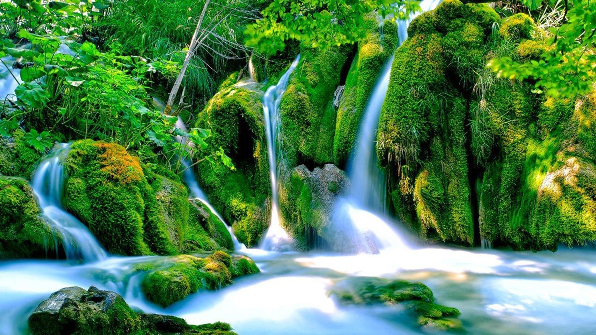 Водопады струятся между покрытыми водорослями скалами зеленые деревья кусты растения падают обои скачать